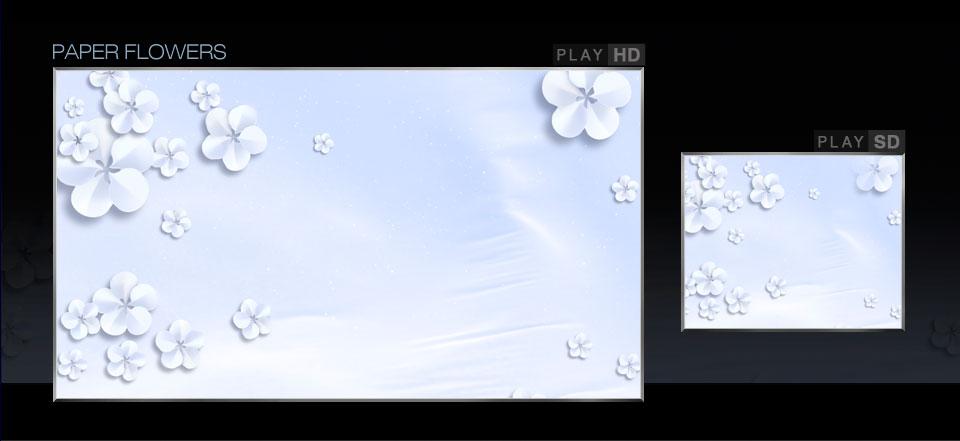 gallery_33.jpg