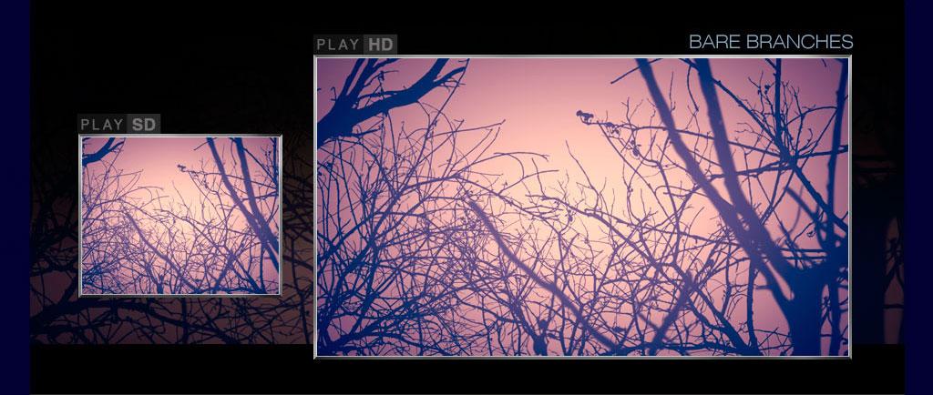 gallery_18.jpg