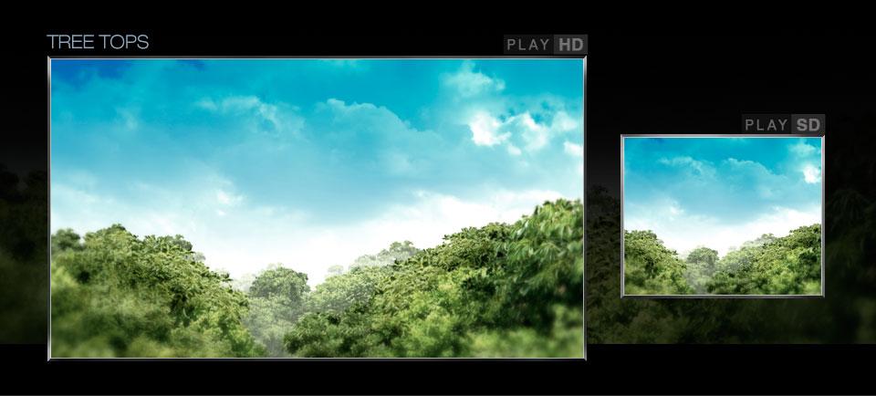 gallery_40.jpg